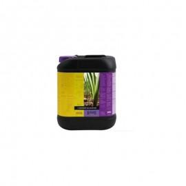 Bcuzz 1 Component Soil Nutrition 5L (Atami)