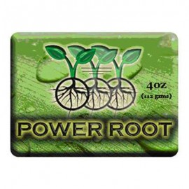 IPP Power Root Gel 150ml^