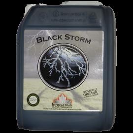 HOG Black Storm 5L.^
