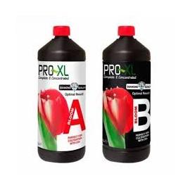 BLOOM A&B 1L PRO-XL